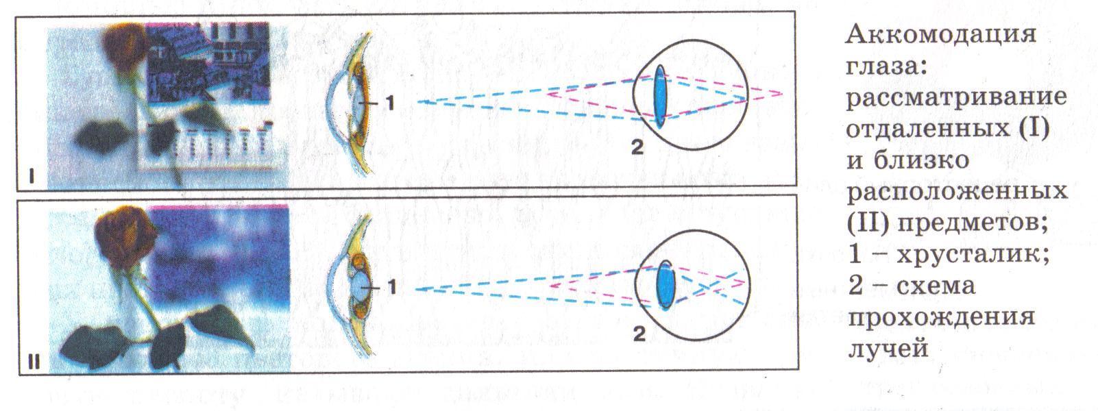 Как восстановить зрение в исламе